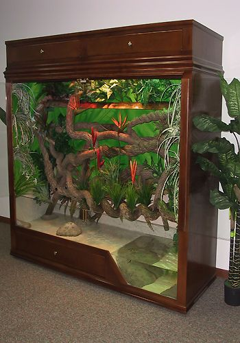 Another tropical enclosure with pool
