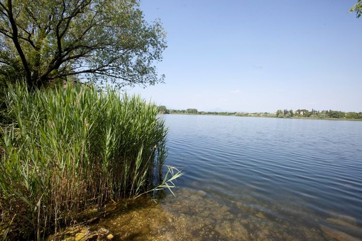 Frassino Lake Oasis