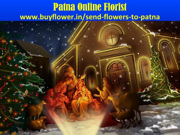 Patna online florist Available In Christmas day  Christmas Day 2016 is the Famous Event Of The World In this Event Every People Send Flowers, Gifts, Sweets, Dry Fruits To Our Relatives and Friends Through http://www.buyflower.in/send-flowers-to-patna We Have Give Services Such As:- i) Fast Delivery. ii)Quality Products. iii) Mid Night Delivery. iv) 24*7 Delivery Option Is Available.