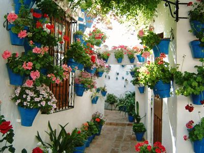 Cordoba in May is full of flowers.  Just love getting lost in these little streets with glimpses of beautiful patios behind thick wooden doors.