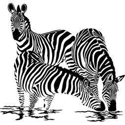 Väggdekor - Zebra 3
