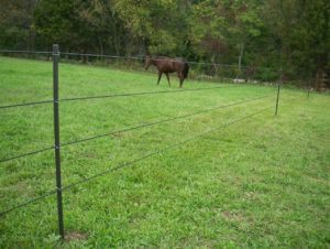 Portable Electric Fence Posts For Horses