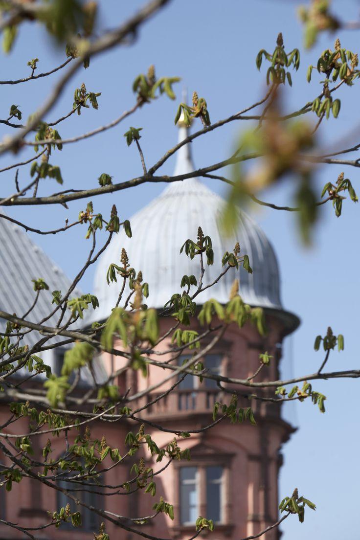 Schloss Gottesaue (Musikhochschule),Gottesaue Palace