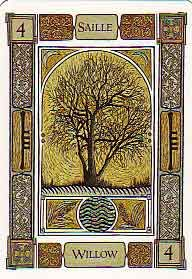 The Celtic Tree Oracle by Liz and Colin Murray- willow.... willow and ash seem to be inconsistent in their placement as the 4th or 5th ogham, I've  found each in the other's place