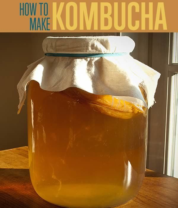 How to make kombucha tea including what is kombucha & what are the benefits & side effects. The organic and raw brewing method to making kombucha drink.