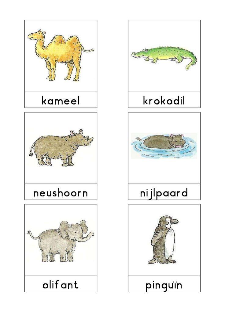 Woordkaarten Bas 'De dierentuin' 2