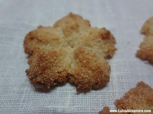 Biscoitos de Coco com Oleo de coco photo DSC00822.jpg