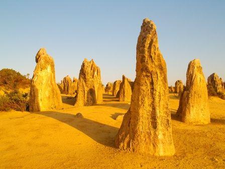 Bienvenue au désert des #Pinnacles en #Australie où l'on y trouve d'étranges formes rocheuses qui dateraient de 30000 ans ! Le spectacle au Printemps est encore plus étrange avec le décor offert par la flore ! #TripInsolite #travel #Australia #desert #voyage #insolite