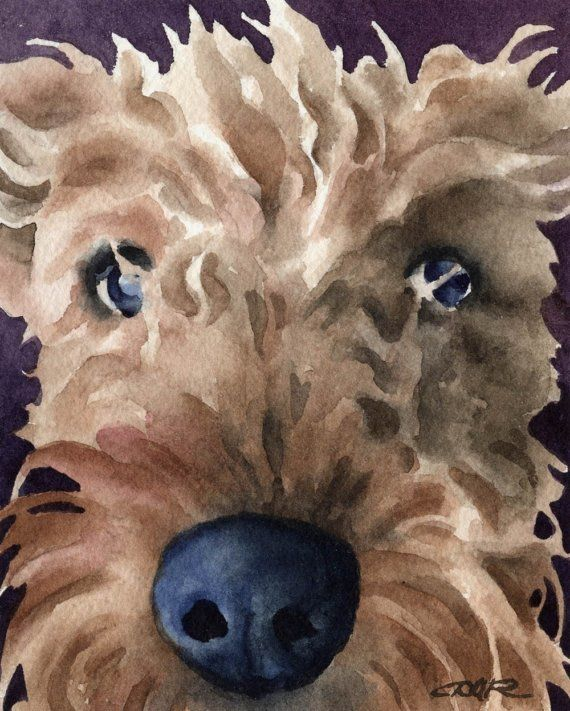 AIREDALE TERRIER Dog Art Print Signed by Artist DJ by k9artgallery, $12.50