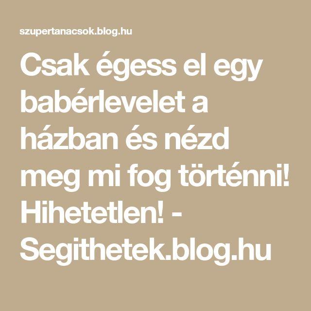 Csak égess el egy babérlevelet a házban és nézd meg mi fog történni! Hihetetlen! - Segithetek.blog.hu