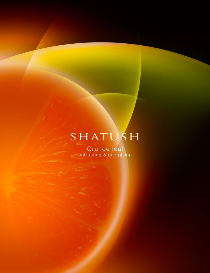 Organic orange leaf extract  has a high content of polyphenols, which are particularly effective in decreasing oxidation by free radicals. It helps fighting hair weakness and prevents premature hair ageing.  #Shatush #orange #hairloss