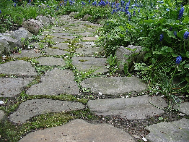 Garden path my parents did this with broken concrete and for Cement garden paths