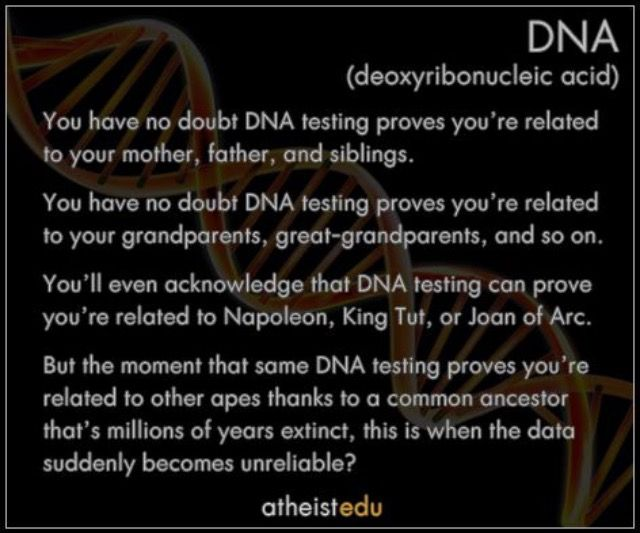 Sibling dna testing on pinterest dna art parenting and paternity