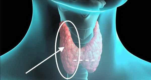 Un articol de Razvan  In zilele noastre, problemele cu tiroida sunt din ce in ce mai des intalnite. Oamenii prezinta tot felul de simptome, insa acestia nu sunt constienti de boala pe care o au sau nu sunt corect diagnosticati.  Tiroida este principala sursa de energie a metabolismului si se comporta asemeni unui …