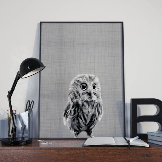 Owl Print Owl Home Decor Animal Art Animal di DamaDigitalDesign