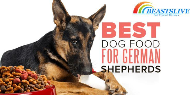 Best dog food for german shepherd updated january 2019
