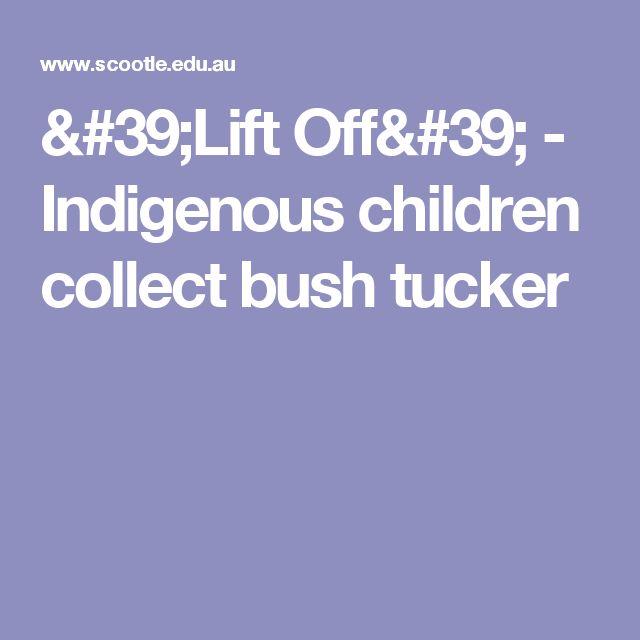 'Lift Off' - Indigenous children collect bush tucker