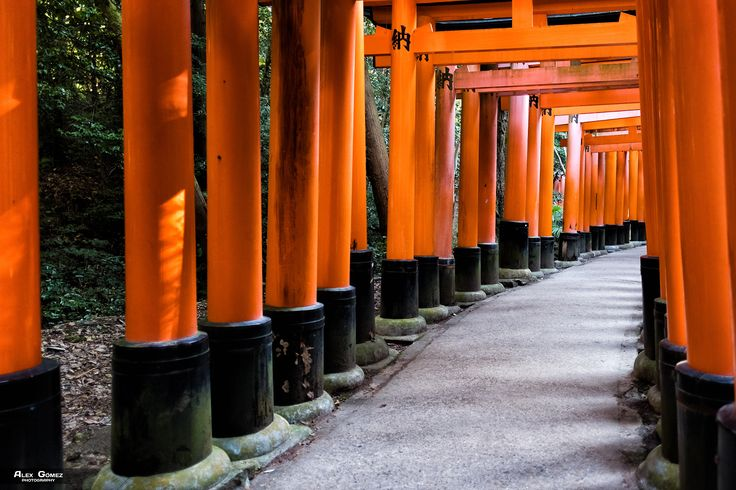 Fushimi Inari-Taisha - The Fushimi Inari-Taisha is the main Shinto shrine dedicated to the spirit of Inari, and located in Fushimi-ku, one of the Kyoto districts.