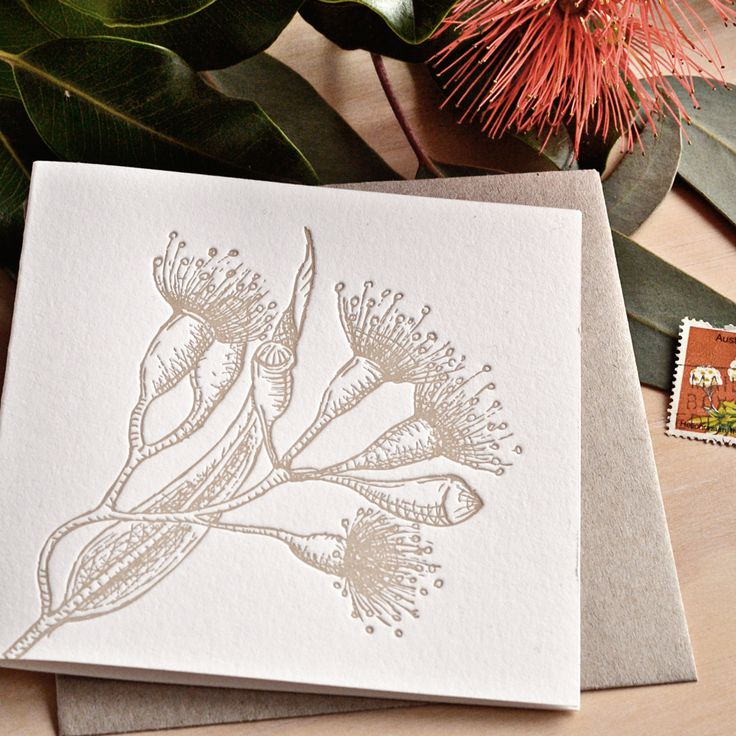 Fluid Ink Fine Letterpress of Australia - Botanical native flowering gum – The flowering gums beautify our skylines. They bloom dramatically in Spring and can be red, pink white or yellow. The elegant leaves and scribbley branches are strikingly strong and resistant. 10x10cm card with Kraft envelope  $6.50