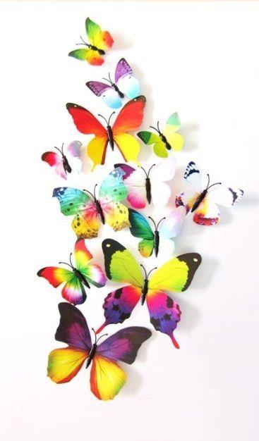 Regenboog - 3D-Vlinders