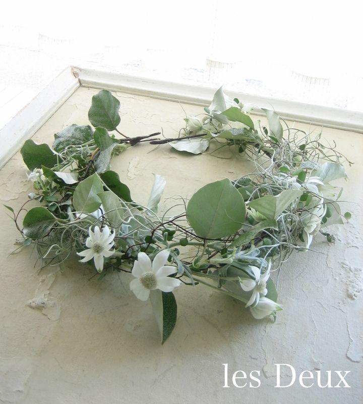 フランネルフラワー、ワイアープランツ、グミの葉、エアープランツの花冠