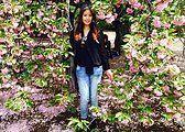 Sakura Trees at Shinjuku Gyoen Gardens