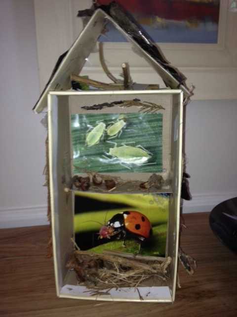 30 Shoe Box Craft Ideas: A Customized Shoe Box Becomes An Outdoor Bug Hotel. Easy