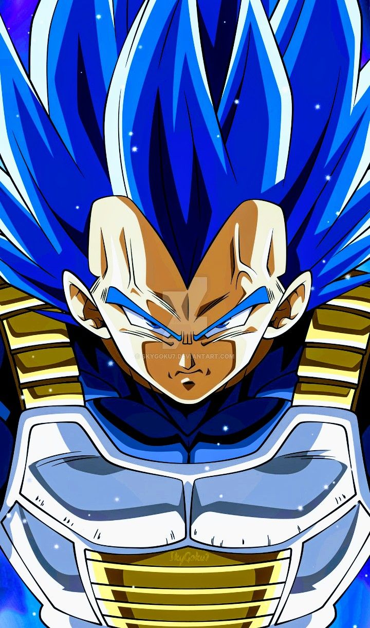 Vegeta Super Saiyan Blue Dragon Ball Super Anime Dragon Ball Super Dragon Ball Artwork Dragon Ball Art