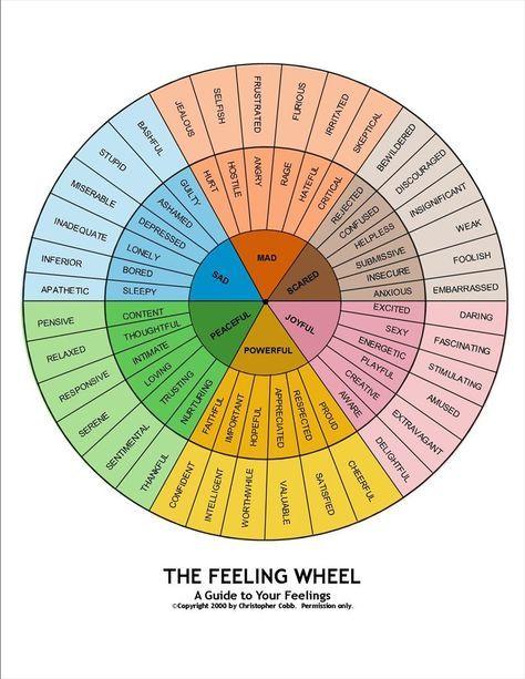 Según el psicólogo PaulEkman las seis emociones primarias son la alegría, tristeza,ira, miedo, sorpresa y disgusto. Estas emociones se podrá decir que son innatas Cuando sentimos algo más complejo que alguna de las seis emociones básicas, lo denominaremos emoción secundaria. Las emociones secundarias son pues una combinación de las emociones primarias, incluso de emociones positivas y negativas simultáneamente