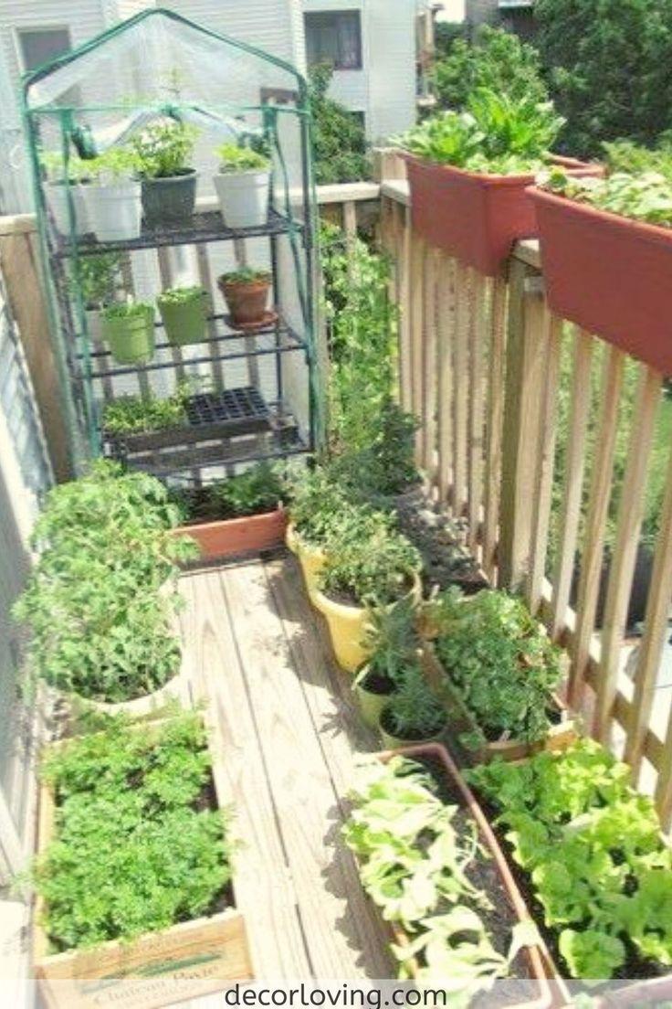 18 Fabulous Backyard Vegetable Garden Design Ideas for ...