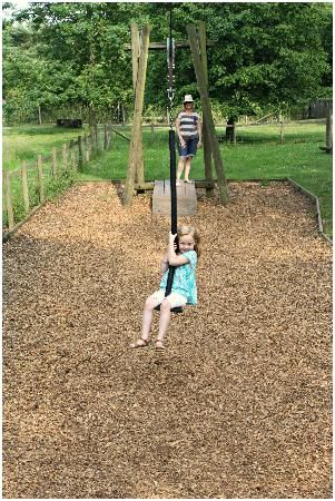 Safe zip line for kids- hands and hair aren't near the line and they aren't far from the ground