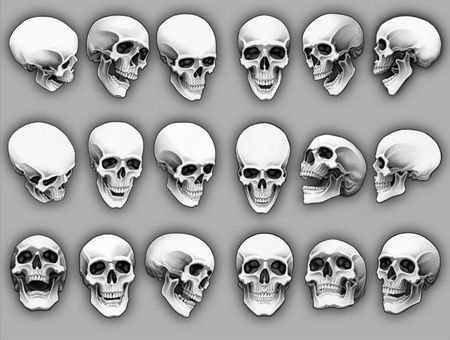 markquestion: Skull references, you probably know why! Emotions seem easy to portray by using angles.