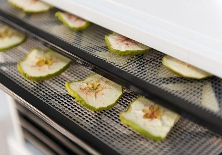 Cómo hacer un deshidratador solar casero de alimentos | Notas | La Bioguía