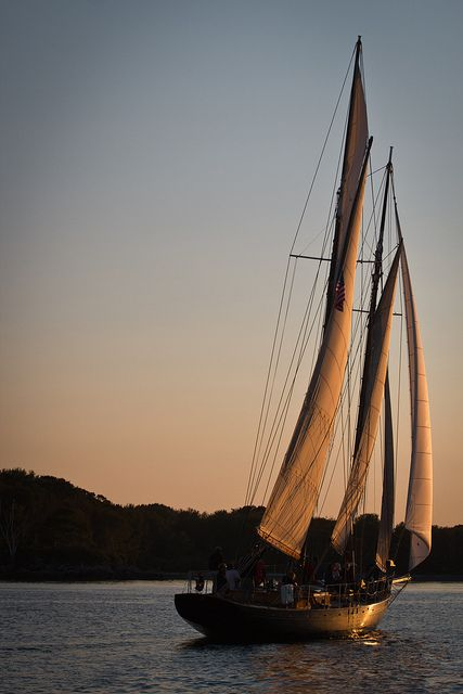 1000+ Images About Sailboats On Pinterest