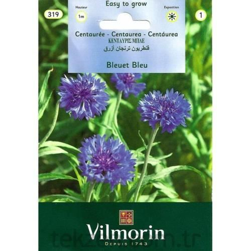 Vilmorin-319 Mavi Kantaron Peygamber Çiçeği Tohumu Seri-1
