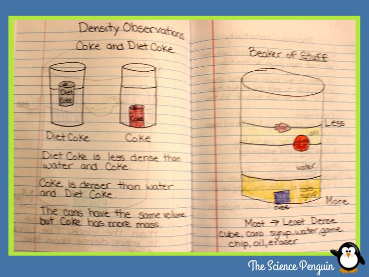 The Science Penguin: New Notebook Blog Series: Properties of Matter--Relative Density