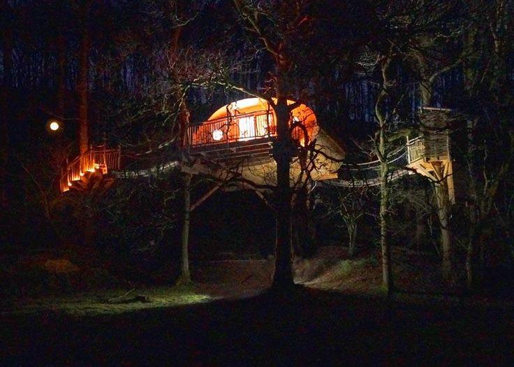 Living-Room Treehouses (Machynlleth, Wales) - Cottage Reviews - TripAdvisor