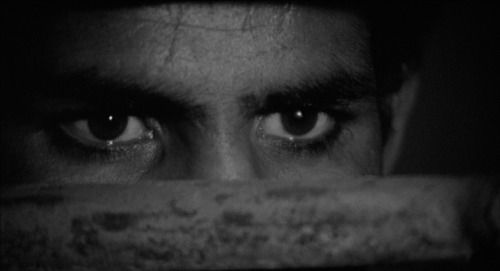 """tribeca: """" """"The Battle of Algiers is still one of the only works of war cinema that thoroughly understands the architectural character of a city in combat, at once meticulously structured (through checkpoints, barriers, and routine patrols)"""