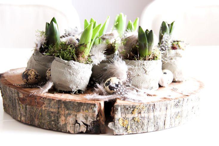 Een mooi voorjaarsstuk op tafel met pasen. Deze DIY bloembollen in beton maak je makkelijk zelf!