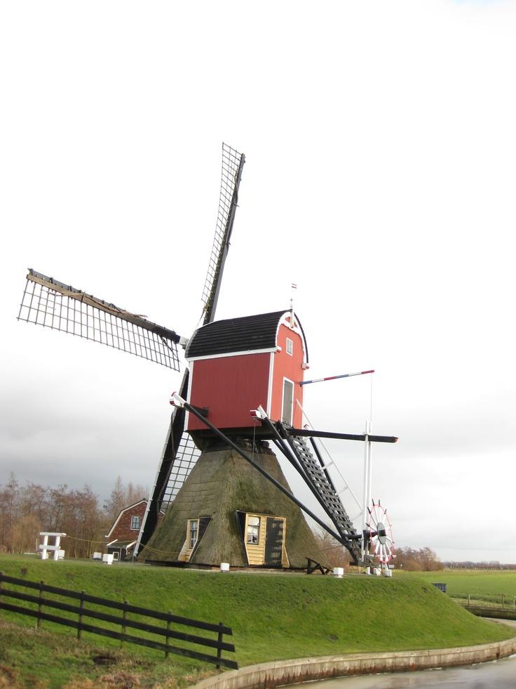 Windmill home.    Leiden, Holland