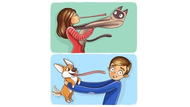 Contoh Gambar Ilustrasi Gambar Manusia Dan Hewan Bikin Gereget 6 Ilustrasi Ini Tunjukkan Beda Kucing Dan Anjing Reproduksi Pada Hewan Ilustrasi Gambar Anjing