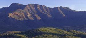 We are protecting the Main Range escarpment for future generations. Photo: Robert Ashdown, Queensland Government.