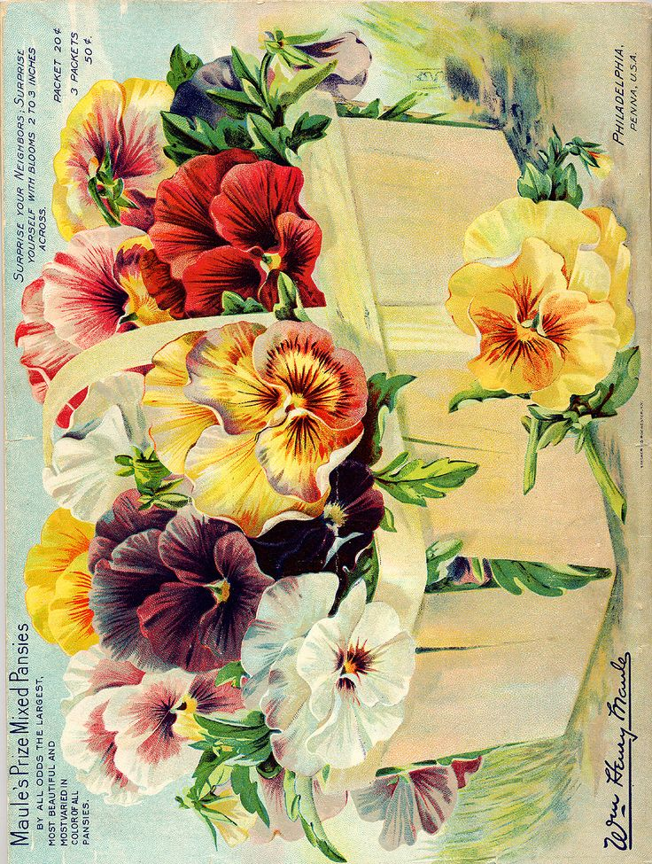 Seed Catalog Smithsonian Institution