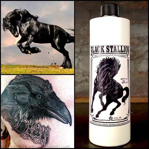 36 best stable color tattoo ink images on pinterest for Waverly tattoo ink