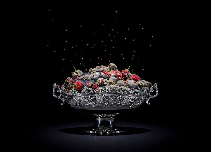 still-life series of rotting food by klaus pichler