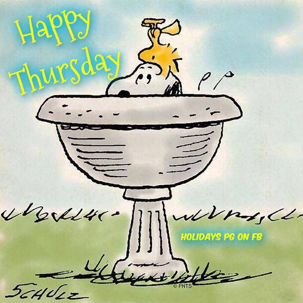 Snoopy And Woodstock Happy Thursday good morning thursday thursday quotes good…