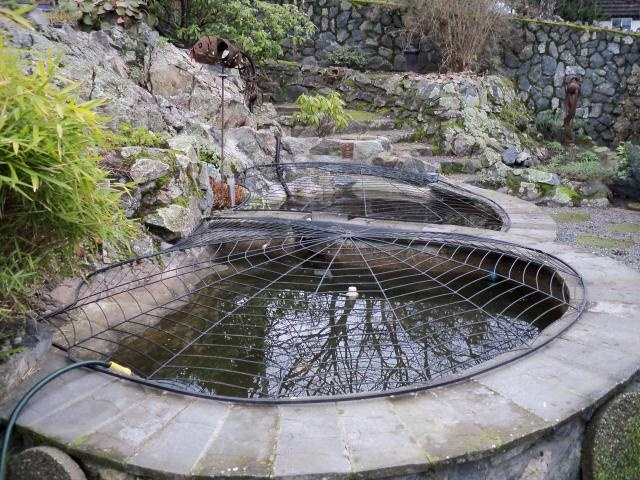 Fish pond cover my secret garden pinterest for Fish pond cover ideas