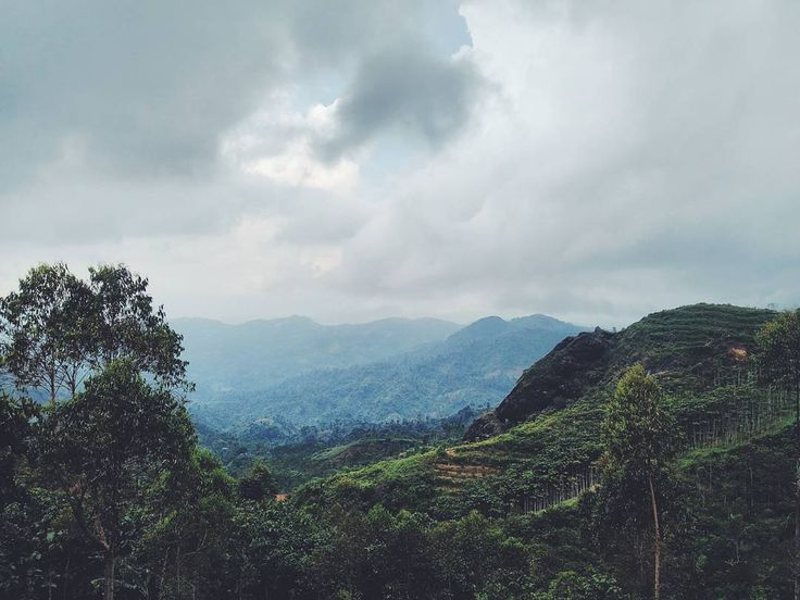 E S C A P E . It seems wandering alone in the place like this was the best cure for me hehe .  Location :: someplace near Batu Tumpang, Cikajang, Garut .  #jelajahgarut #mtmagarut #garutkekinian #melonggarut #instagarut #infogarut #infogarsela #escape #wanderlust #garut