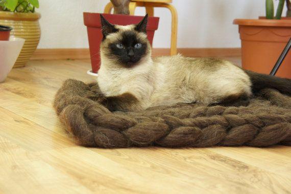 1035 best pet supplies images on pinterest pet supplies