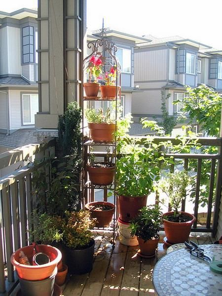 The tiered pots is great for a small balcony like ours!  Do all herbs, maybe one flower (like lavender)?